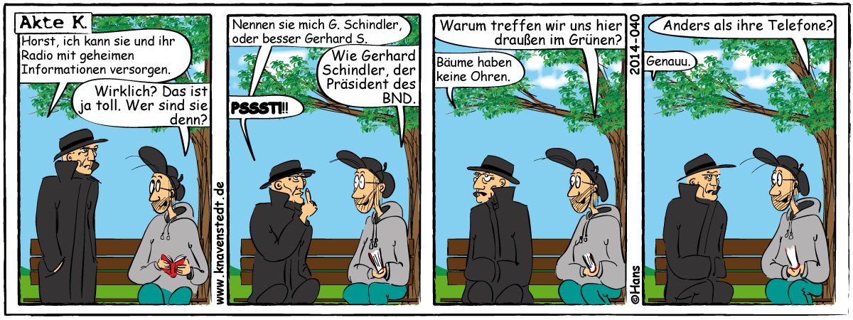 Politik, Comic, Landleben, Comicstrip, Bilder, Knavenstedt, Dorf, Knave, Schelm, Cartoon, Hans